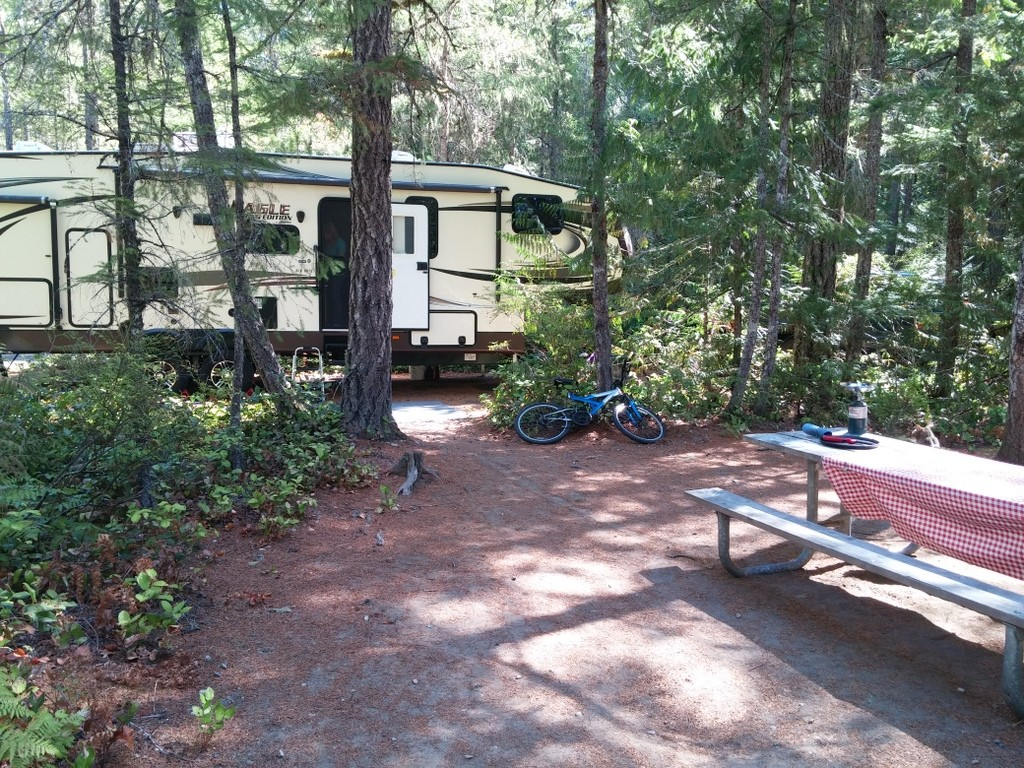Angie found us the best campsite at Newhalem Campground, North Cascades National Park