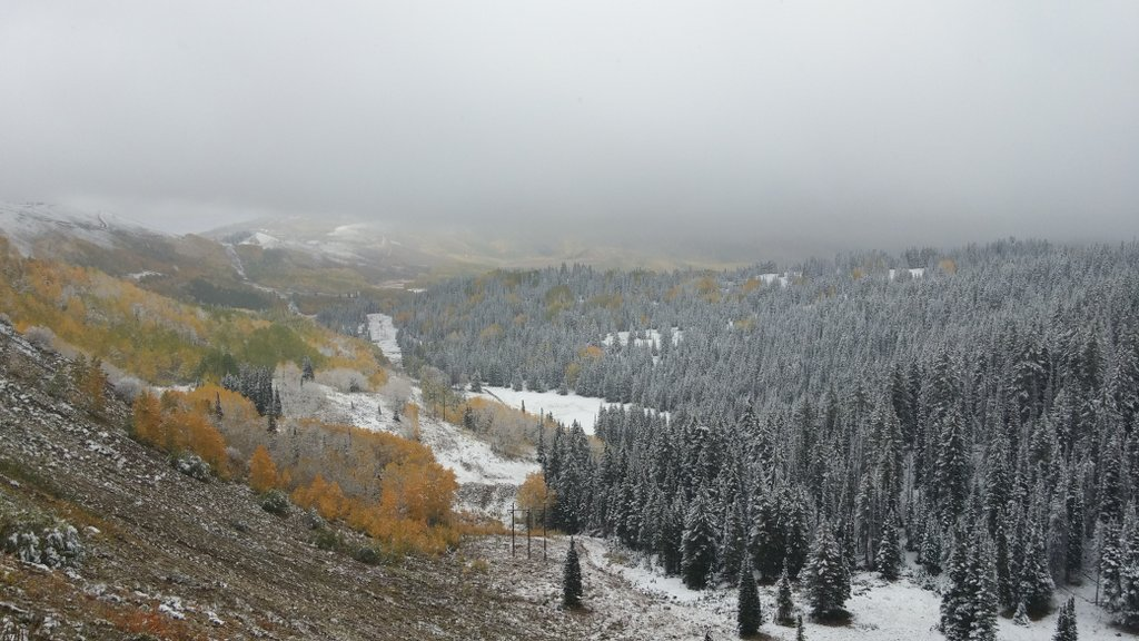 Snow in Big Cottonwood Canyon
