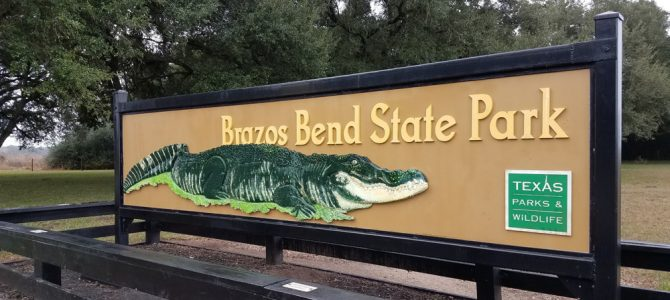 Brazos Bend State Park and Houston Museums