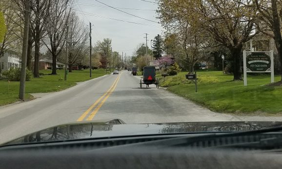 Amish buggies on the street